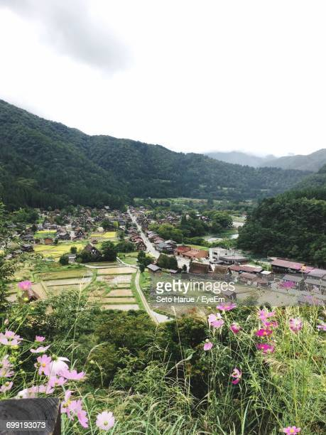 High Angle View Of Flowers In Valley Against Sky