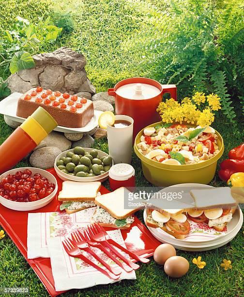 high angle view of food displayed at a picnic