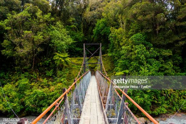 High Angle View Of Footbridge Against Trees At Forest