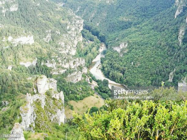High Angle View Of Fresh River Amidst Trees In Forest