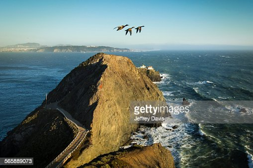 High angle view of geese flying over Marin Headlands, Sausalito, California, United States