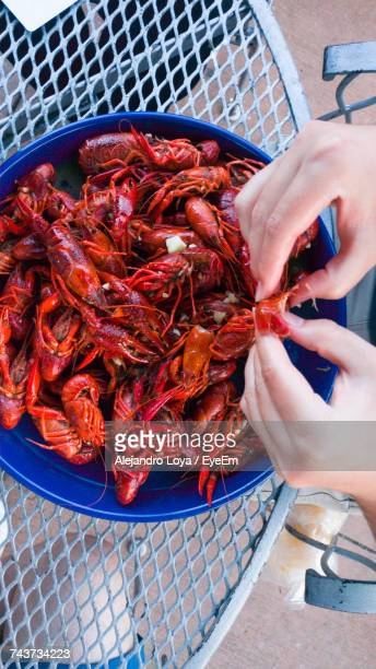 High Angle View Of Hands Preparing Seafood