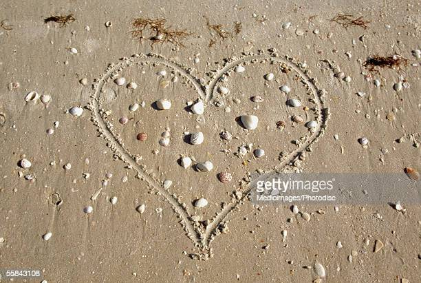 High angle view of heart drawn in sand with seashells around it, Sanibel Island, Florida, USA
