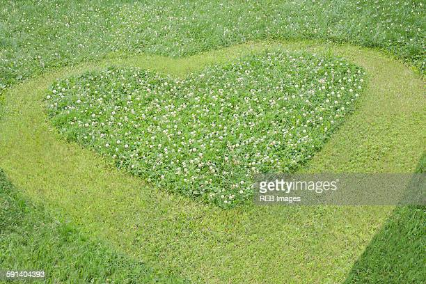 High angle view of heart mowed in grass lawn