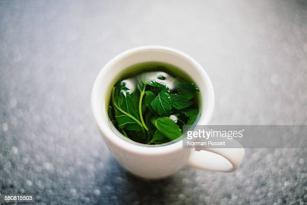 High angle view of herbal tea in cup on table
