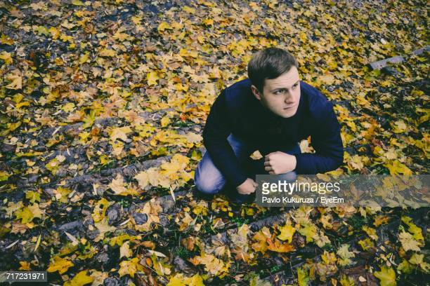 High Angle View Of Man Crouching On Steps Amidst Fallen Yellow Leaves During Autumn