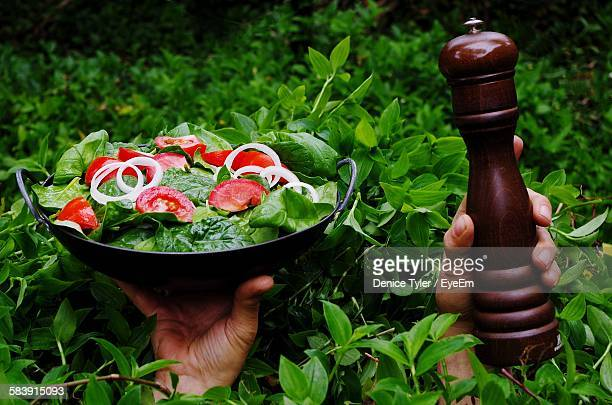 High Angle View Of Man Hand Carrying Fresh Salad And Pepper Container Amidst Green Plants