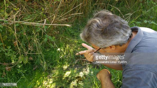 High Angle View Of Man Looking At Moss