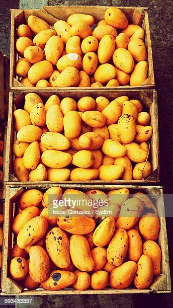 High Angle View Of Mangoes In Crate