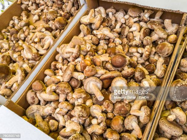 High Angle View Of Mushrooms For Sale At Market Stall