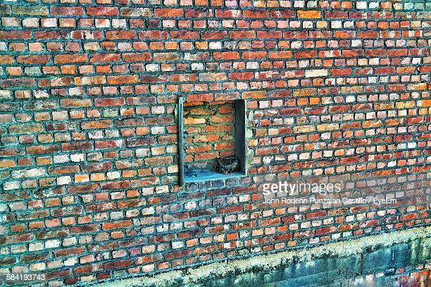 High Angle View Of Nest In Niche Of Brick Wall