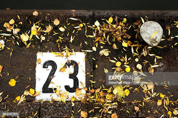 High Angle View Of Number And Flowers On Floor