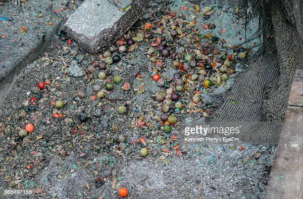 High Angle View Of Paintballs And Fruits On Field