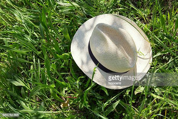 High angle view of panama hat on grass