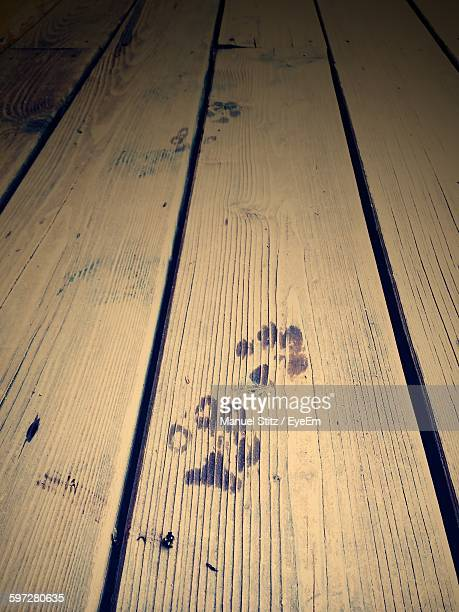 High Angle View Of Paw Prints On Wooden Plank At Night