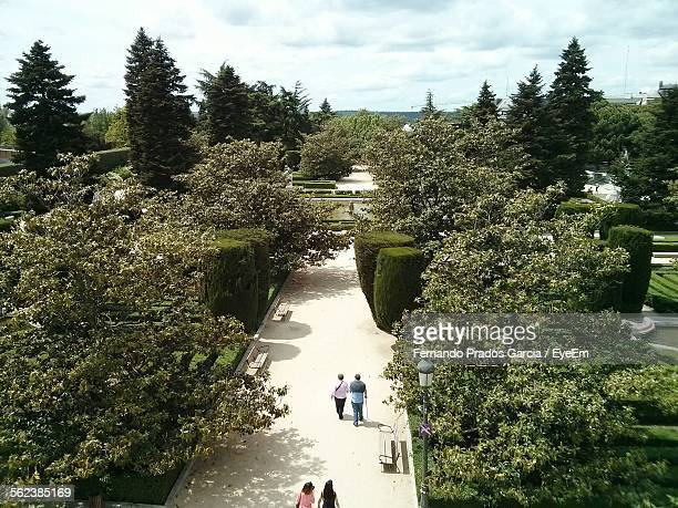 High Angle View Of People Walking Amidst Trees In Park