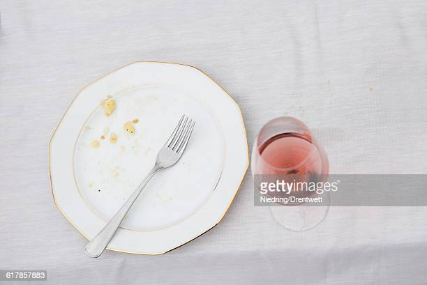 'High angle view of plate with remains and half full glass of red wine on picnic table, Bavaria, Germany'