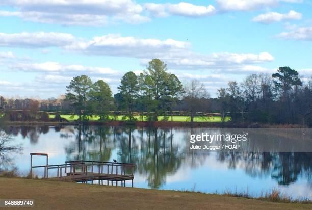 High angle view of pond