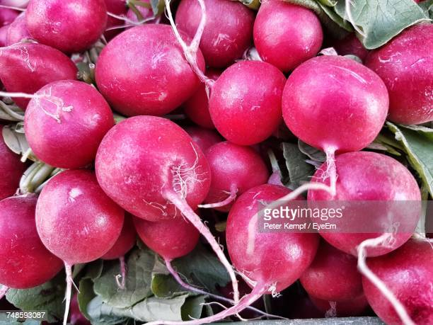 High Angle View Of Radish For Sale