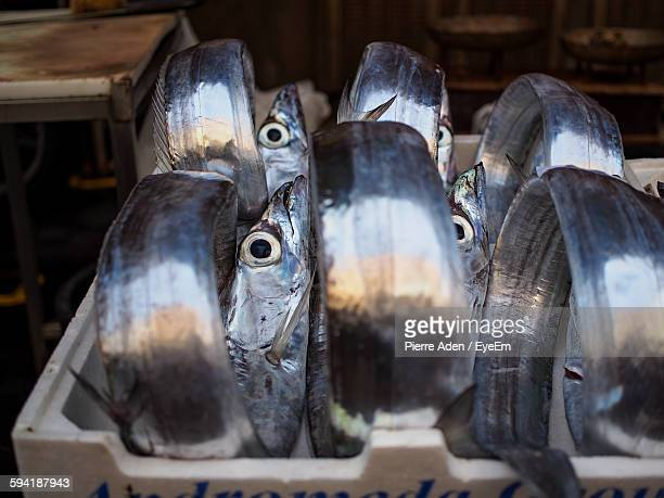 High Angle View Of Ribbonfishes In Crate For Sale At Fish Market