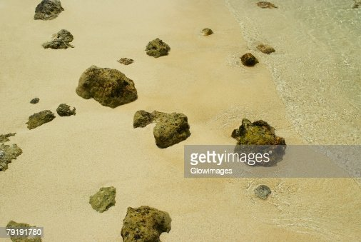 High angle view of rocks on the beach, San Andres, Providencia y Santa Catalina, San Andres y Providencia Department, Colombia : Foto de stock