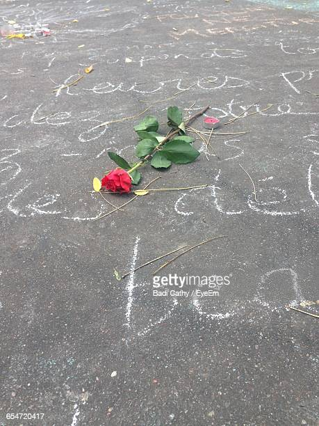 High Angle View Of Rose And Tea Light On Street With Chalk Drawing
