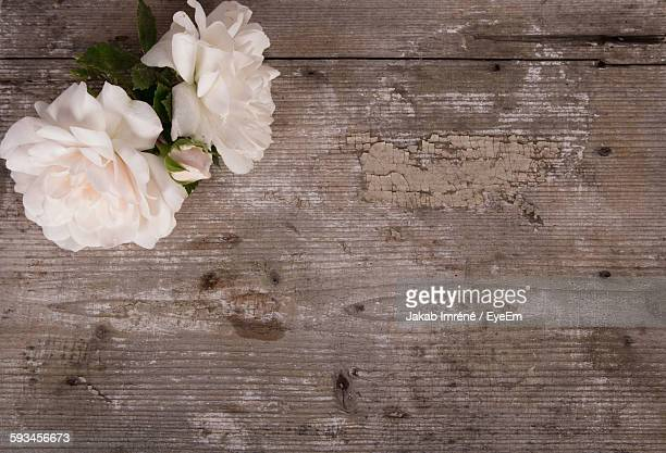 High Angle View Of Rose Flowers On Wooden Table