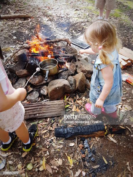 High Angle View Of Siblings Roasting Marshmallows At Campfire On Field