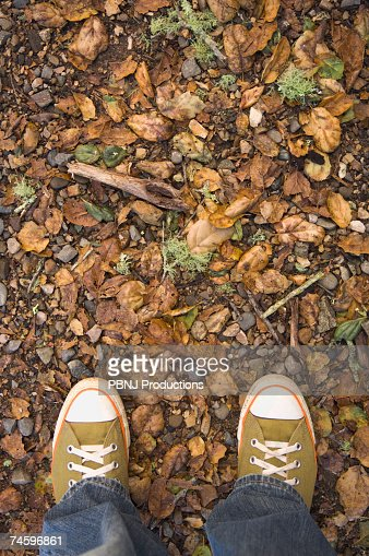 High angle view of sneakers on nature trail : Stock Photo