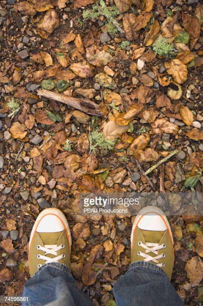 High angle view of sneakers on nature trail