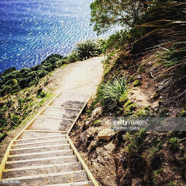 High Angle View Of Steps Leading Towards Sea