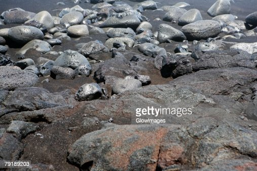 High angle view of stones, Kalapana, Big Island, Hawaii Islands, USA : Foto de stock