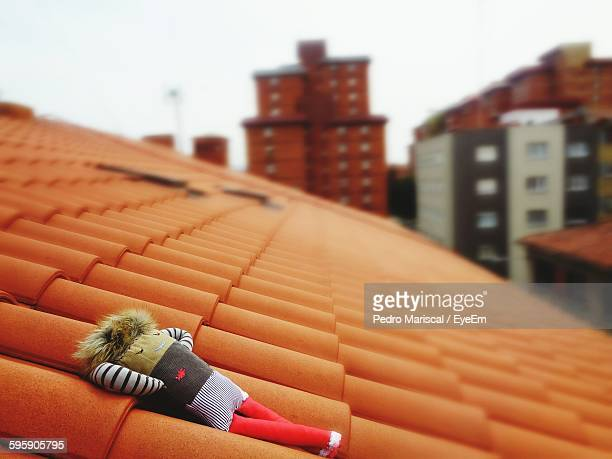 High Angle View Of Stuffed Toy On Roof