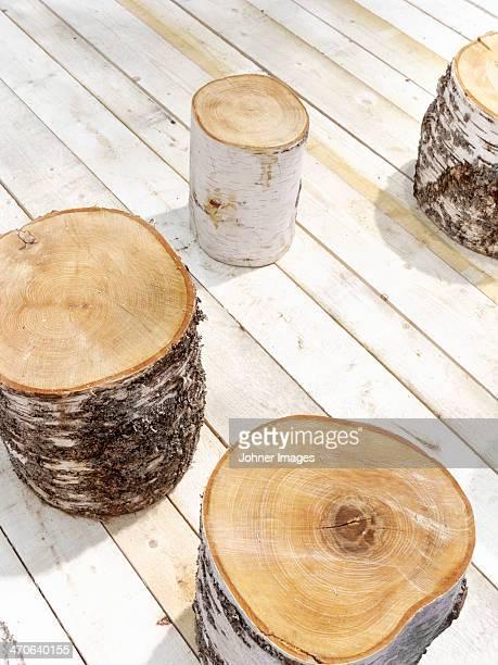 High angle view of stumps