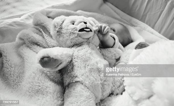 High Angle View Of Teddy Bear On Baby Lying In Bed