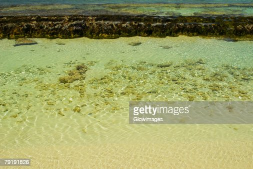 High angle view of the sea, San Andres, Providencia y Santa Catalina, San Andres y Providencia Department, Colombia : Foto de stock