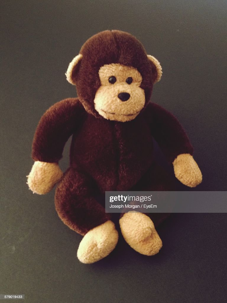 High Angle View Of Toy Monkey On Ground