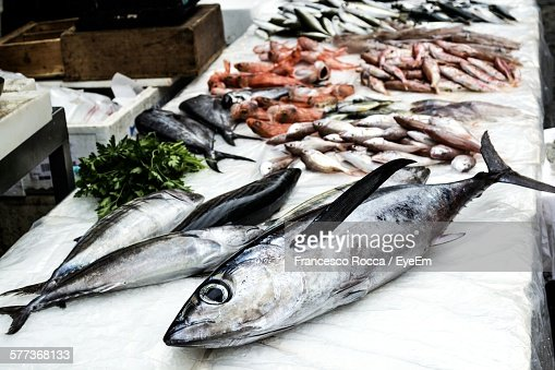 High Angle View Of Various Fishes For Sale At Market Stall