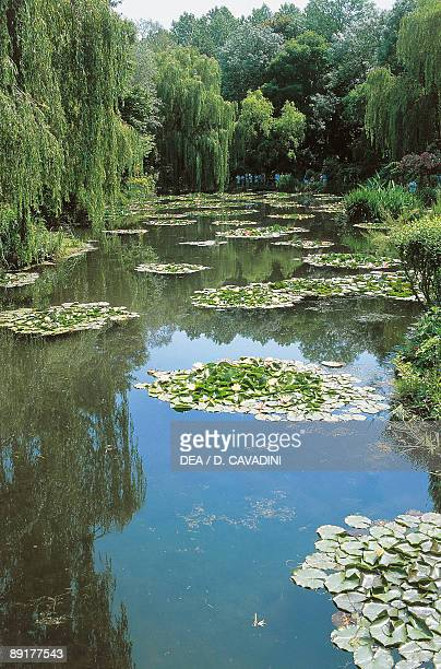 High angle view of water lily pads in a lake Claude Monet's Garden Giverny Normandy France