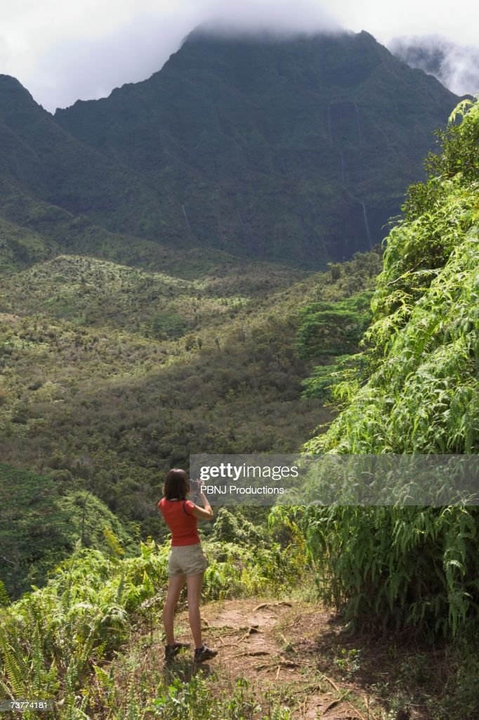 High angle view of woman looking out over lush jungle valley : Stock Photo
