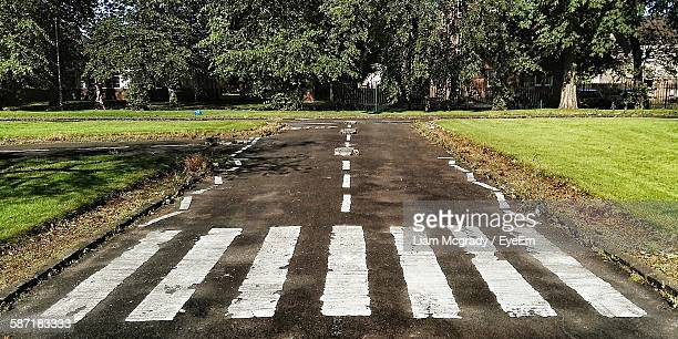 High Angle View Of Zebra Crossing On Road Amidst Field Against Trees