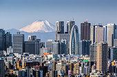 High building at Tokyo shinjuku and Mt. Fuji