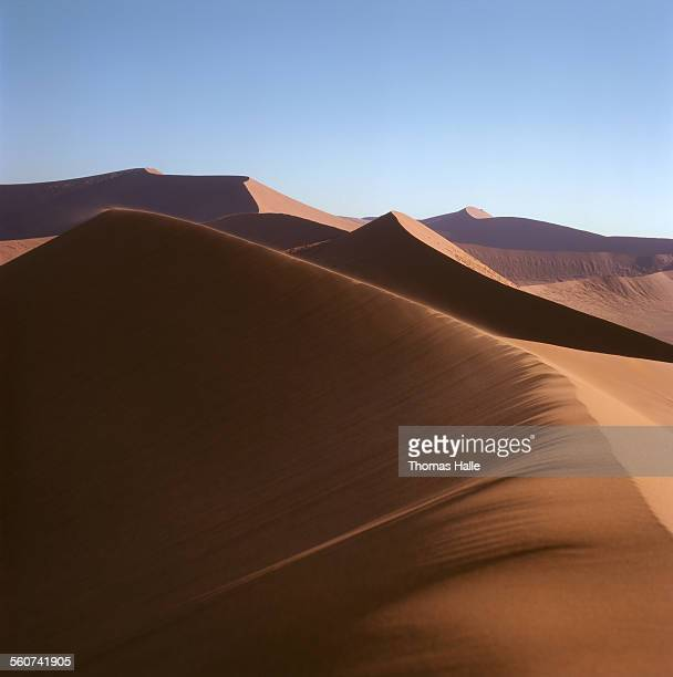 High dunes near Sossusvlei