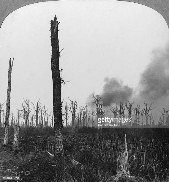 High explosive shells bursting in Mametz Wood Somme France World War I 1916 Mametz Wood was the objective of the 38th Division at the Battle of the...