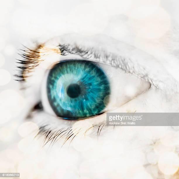 High key female human eye in strong sunlight