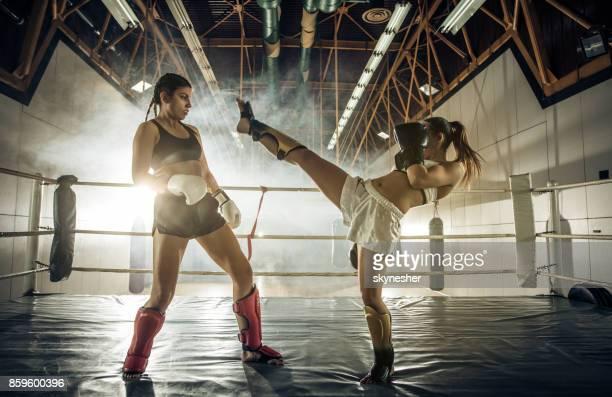 High kick on a kickboxing match!