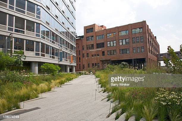 High Line, a mile-and-a-half-long elevated park, running through West Side neighborhoods of Meatpacking District, West Chelsea, Clinton and Hell's Kitchen, NY, NY, USA