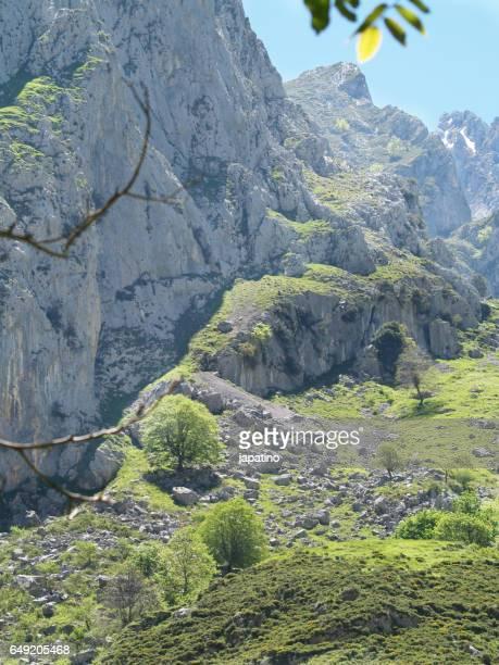 High mountain landscape in the Picos de Europa
