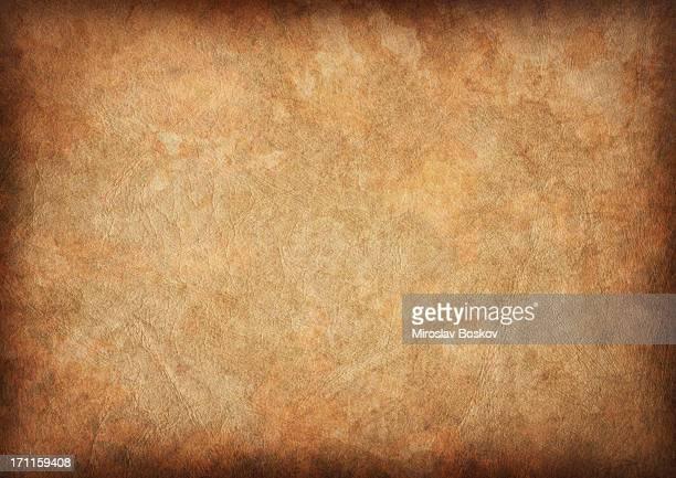 Haute résolution antiquités Peau animale Papier parcheminé Vignette de Grunge de la Texture
