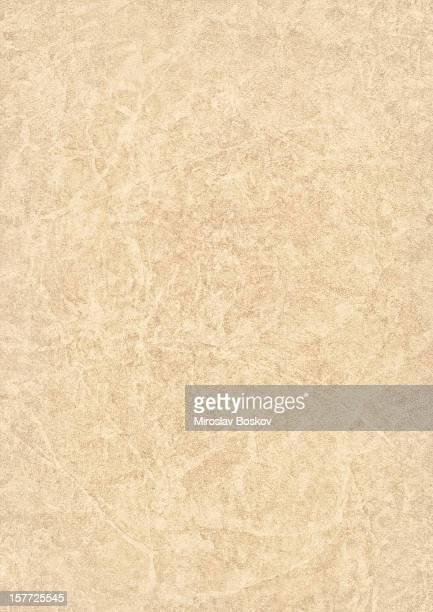 High Resolution Beige Antique Animal Skin Parchment Grunge Texture